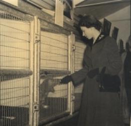 The Queen's visit in 1955